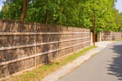 clôture brise vue naturelle