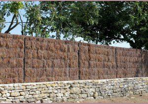 clôture bise vue naturel