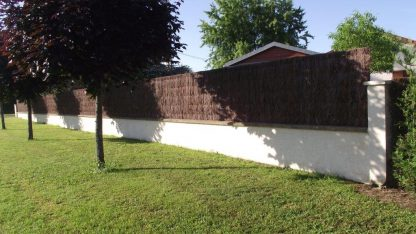 brande de bruyère sur un mur