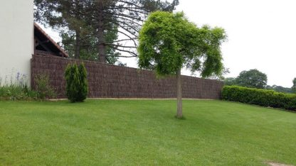 cloture de brande dans un jardin